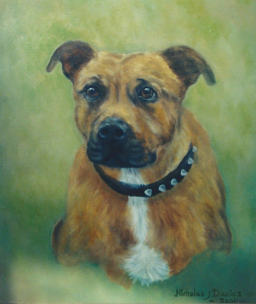 Portrait of a pet dog