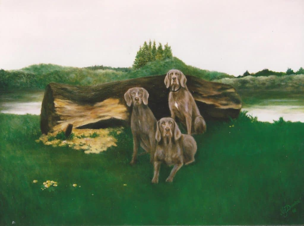 Three dogs beside a trunk in the countryside