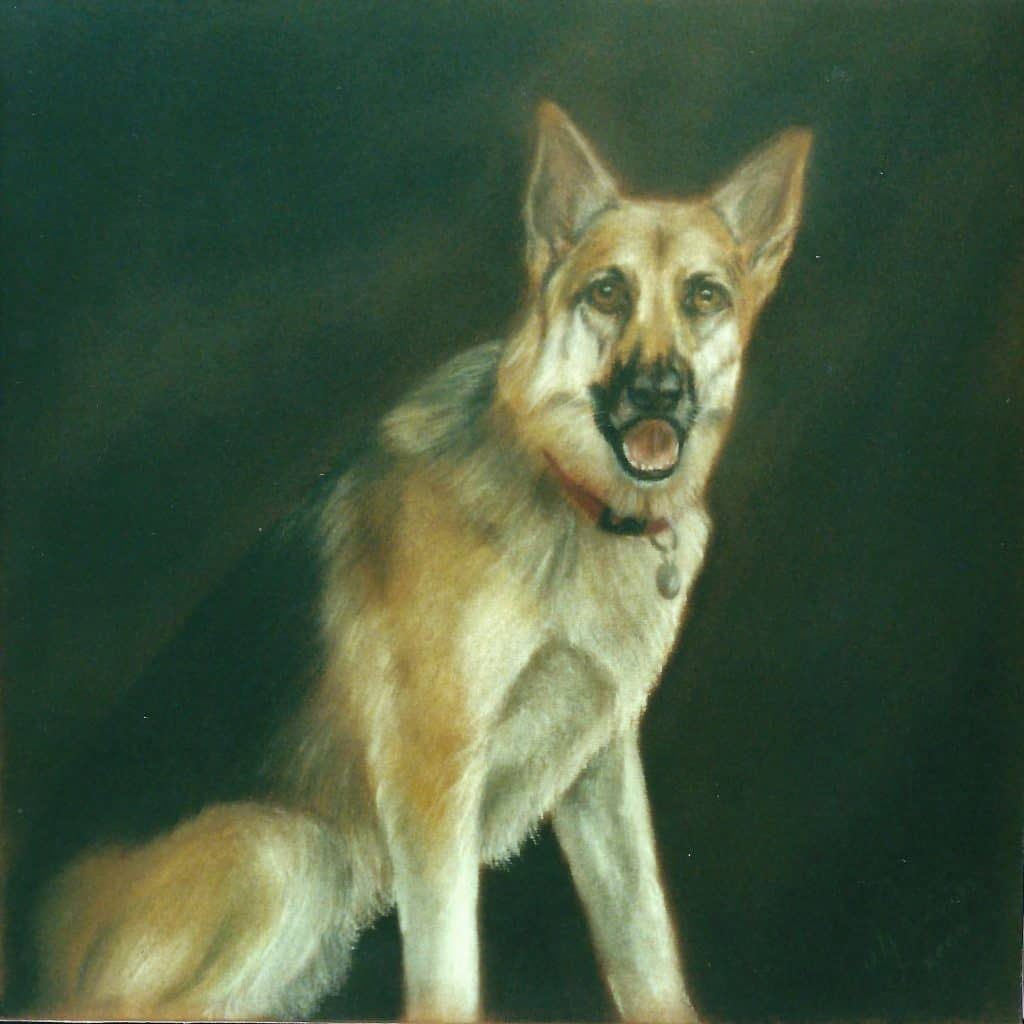 German Shepherd Picture
