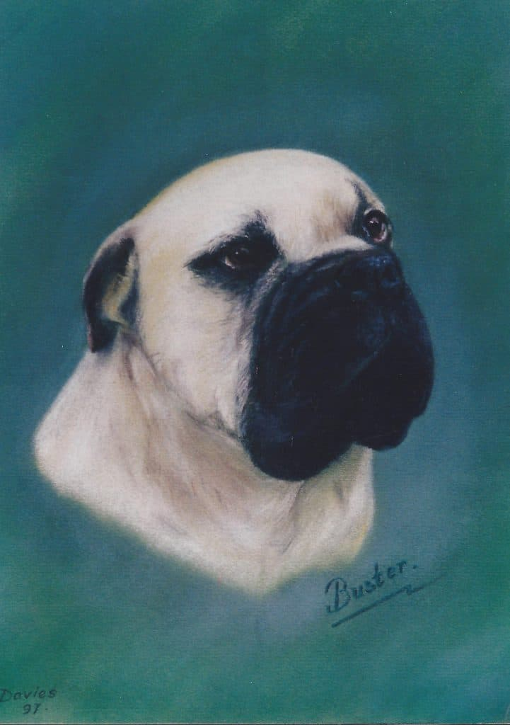 Dog pastel of Buster